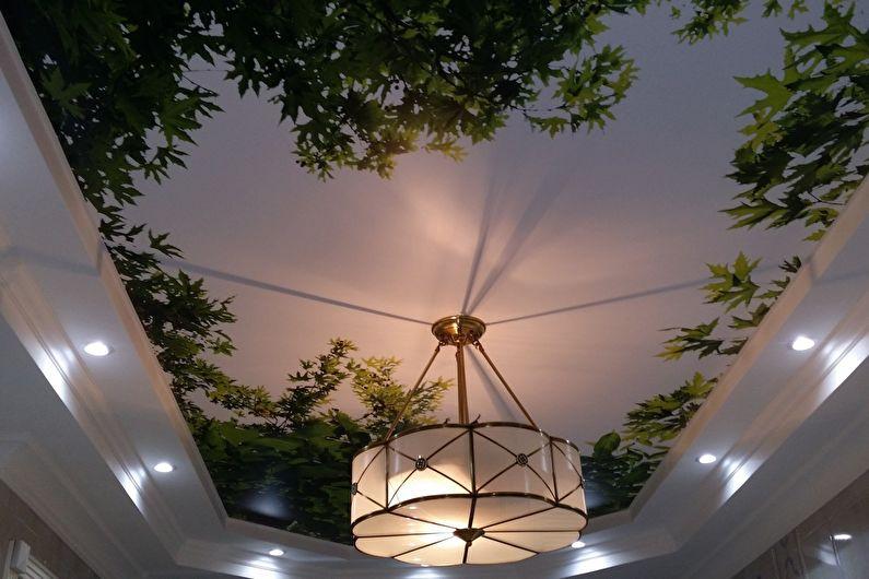 Натяжной потолок с фотопечатью в прихожей - фото