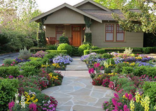 Цветы для дачи: особенности, виды, идеи для цветника