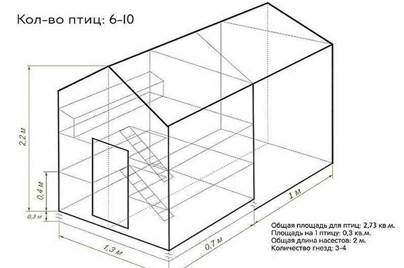 Этапы строительства курятника своими руками - Планировка