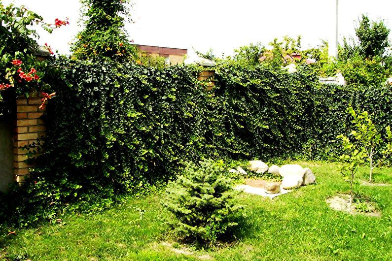 Украшения для сада своими руками - Ограды и заборы
