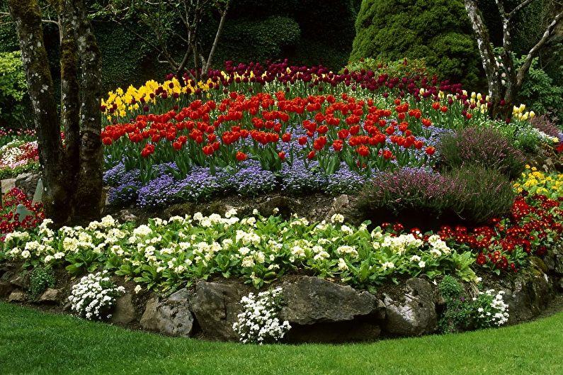 Клумба своими руками - Правила выбора цветов