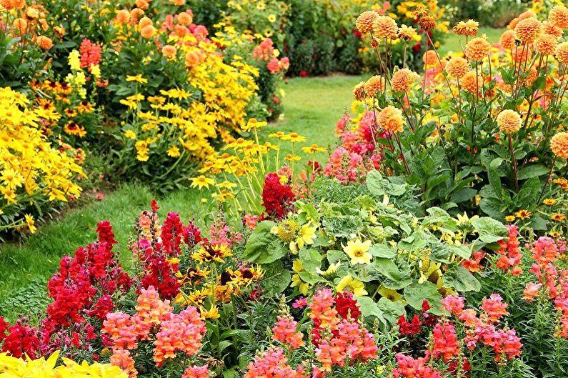 Многолетние цветы для дачи и сада - Преимущества посадки
