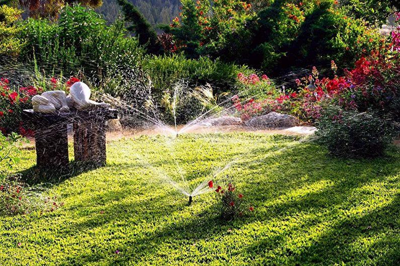 Многолетние цветы для дачи и сада - Уход
