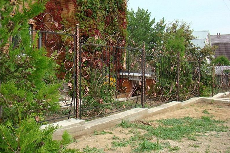 Фото кованных заборов для частных домов