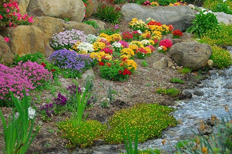 Альпийская горка своими руками - Как выбрать растения