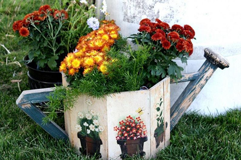 Хризантемы - История растения